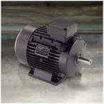 Motor Eléctrico 8